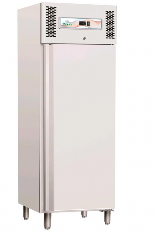 Congelatore verticale professionale AFP/GNB600BT