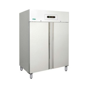 Professional vertical AFP / GN1200TN freezer in stainless steel
